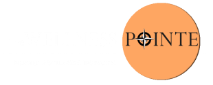 The Wellness Pointe Chiropractic